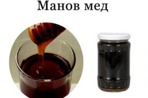 манов-мед-380x252