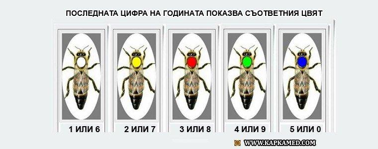 Маркиране или белязване на пчелните майки - Цветове за съответната година